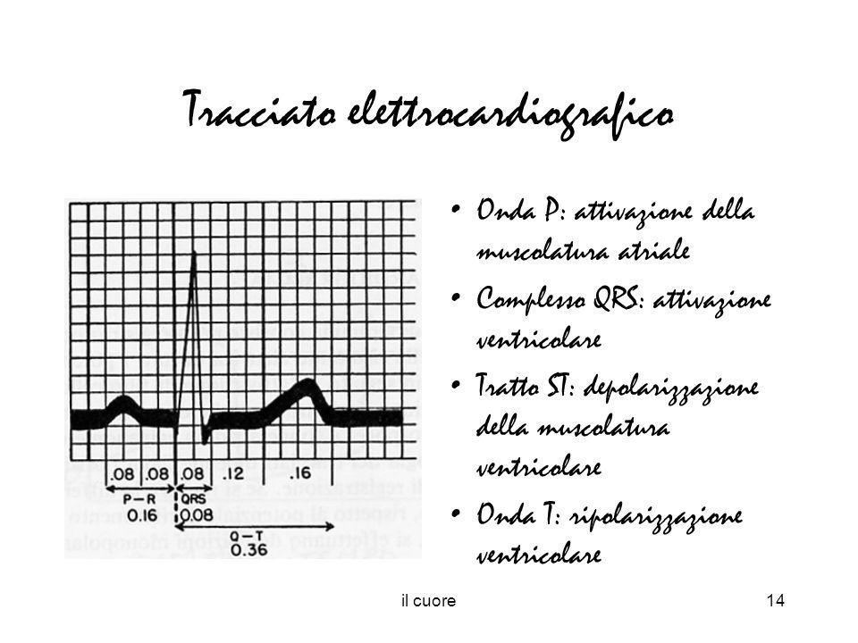 Tracciato elettrocardiografico