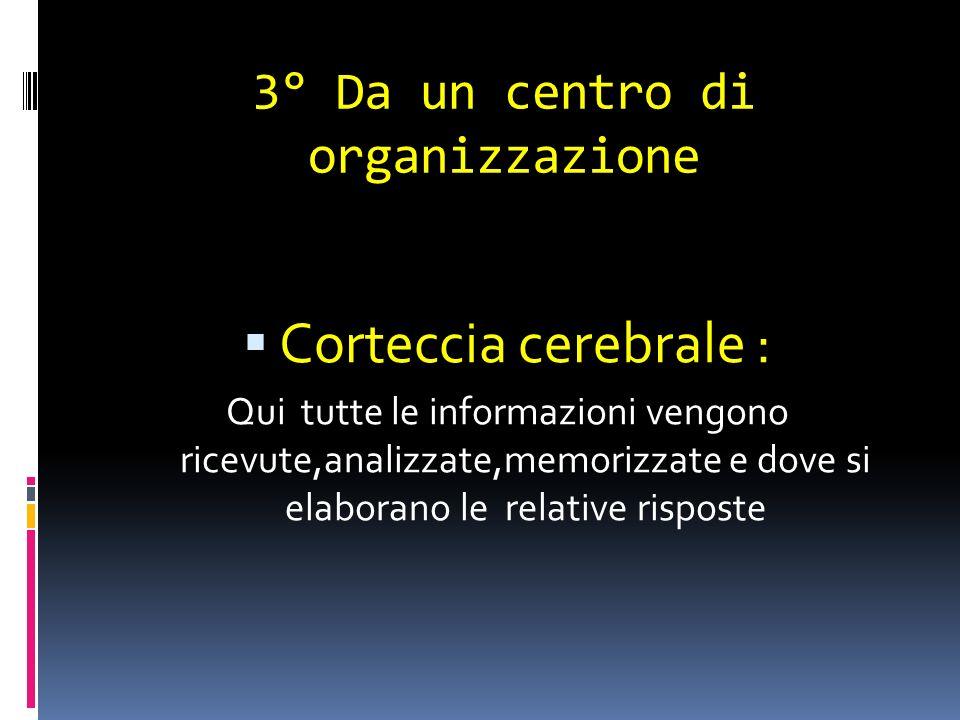 3° Da un centro di organizzazione