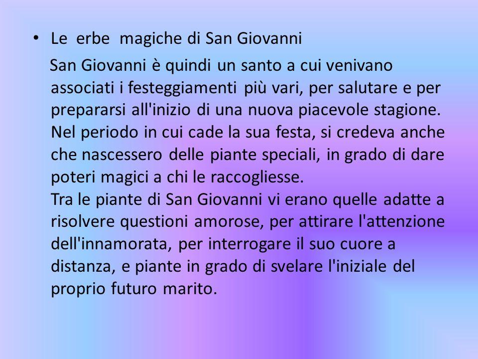 Le erbe magiche di San Giovanni