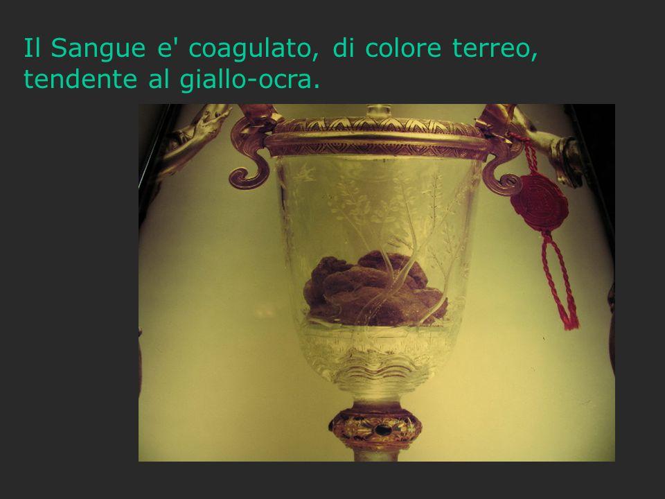 Il Sangue e coagulato, di colore terreo, tendente al giallo-ocra.