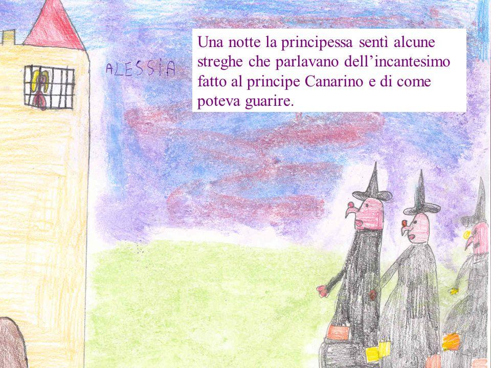 Una notte la principessa sentì alcune streghe che parlavano dell'incantesimo fatto al principe Canarino e di come poteva guarire.