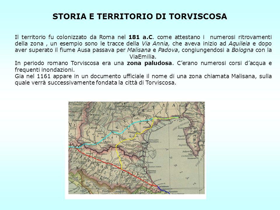STORIA E TERRITORIO DI TORVISCOSA