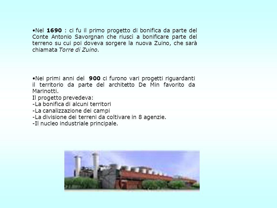 Nel 1690 : ci fu il primo progetto di bonifica da parte del Conte Antonio Savorgnan che riuscì a bonificare parte del terreno su cui poi doveva sorgere la nuova Zuino, che sarà chiamata Torre di Zuino.