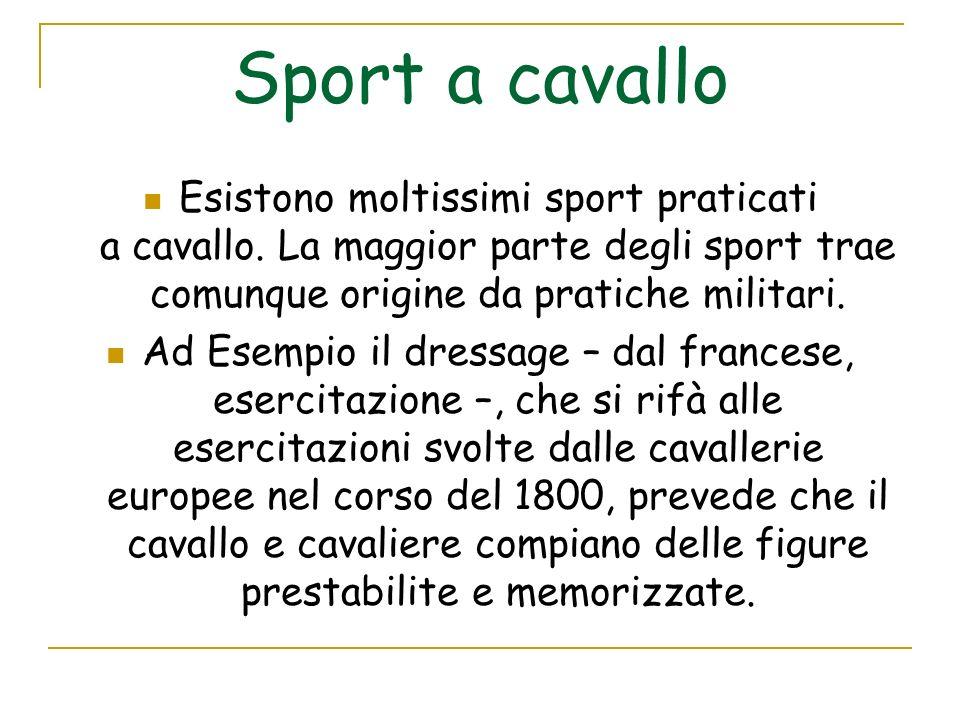 Sport a cavallo Esistono moltissimi sport praticati a cavallo. La maggior parte degli sport trae comunque origine da pratiche militari.