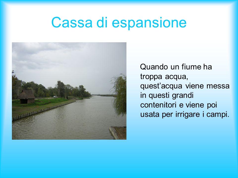 Cassa di espansione Quando un fiume ha troppa acqua, quest'acqua viene messa in questi grandi contenitori e viene poi usata per irrigare i campi.