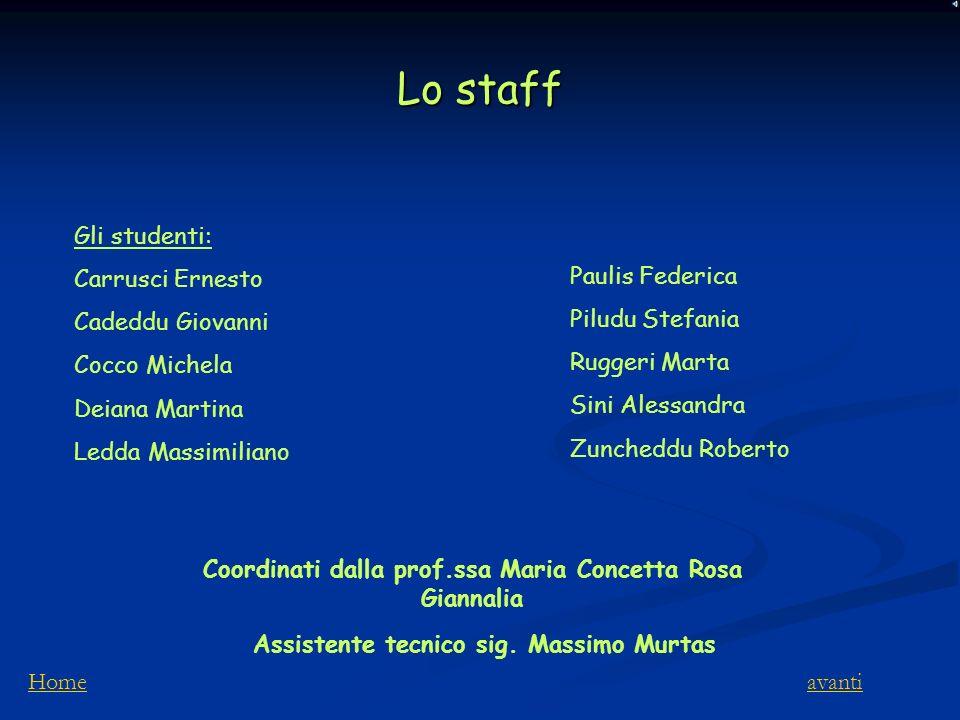 Lo staff Gli studenti: Carrusci Ernesto Cadeddu Giovanni Cocco Michela