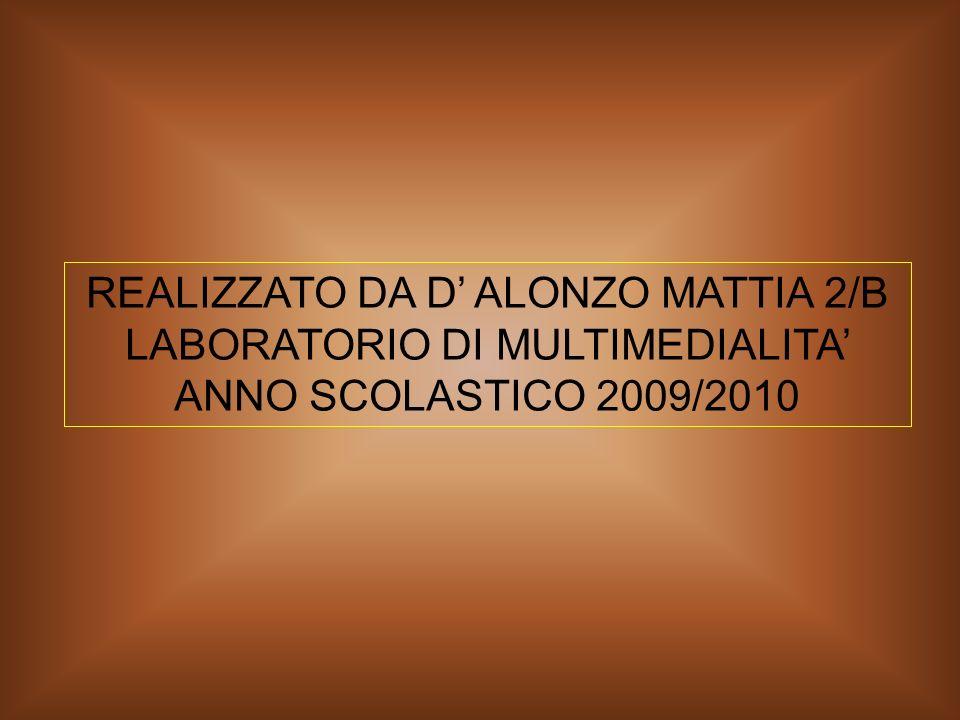 REALIZZATO DA D' ALONZO MATTIA 2/B LABORATORIO DI MULTIMEDIALITA' ANNO SCOLASTICO 2009/2010
