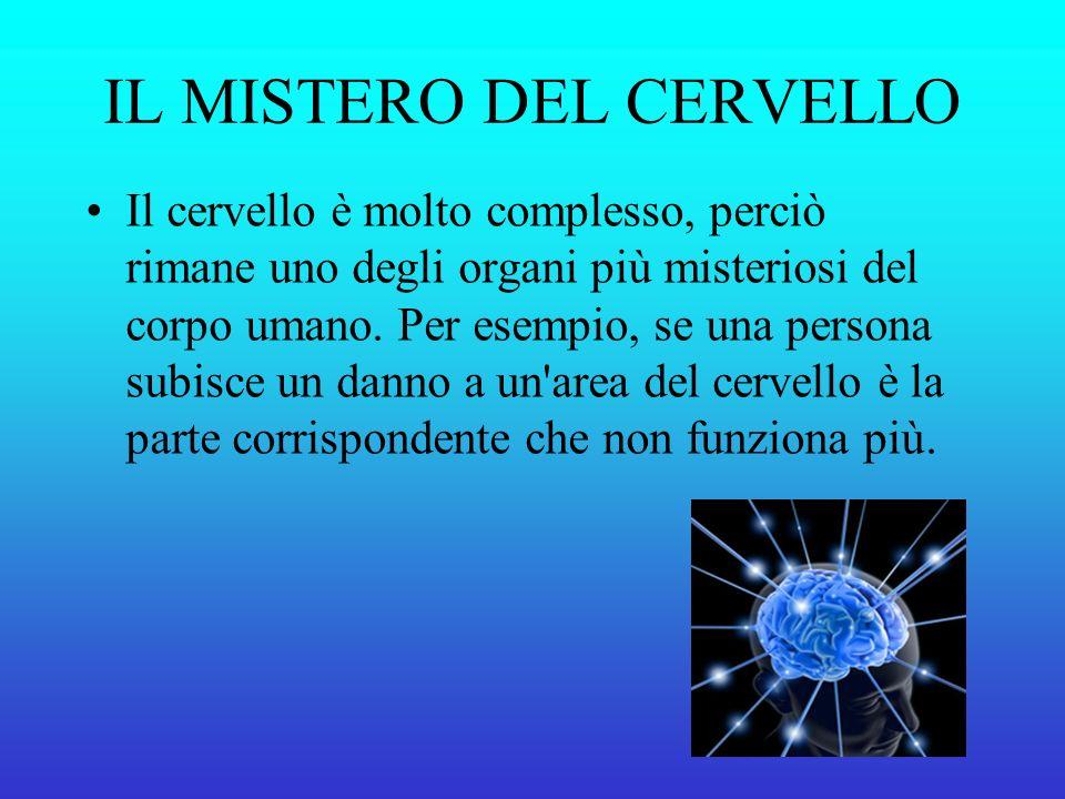 IL MISTERO DEL CERVELLO