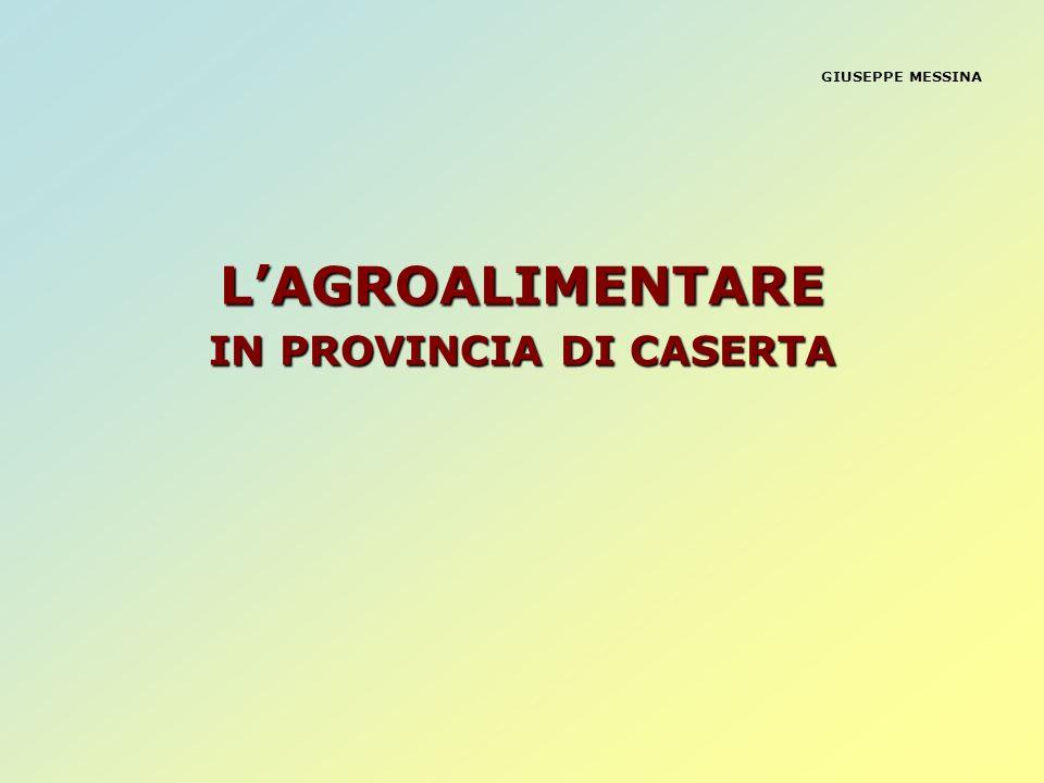 IN PROVINCIA DI CASERTA