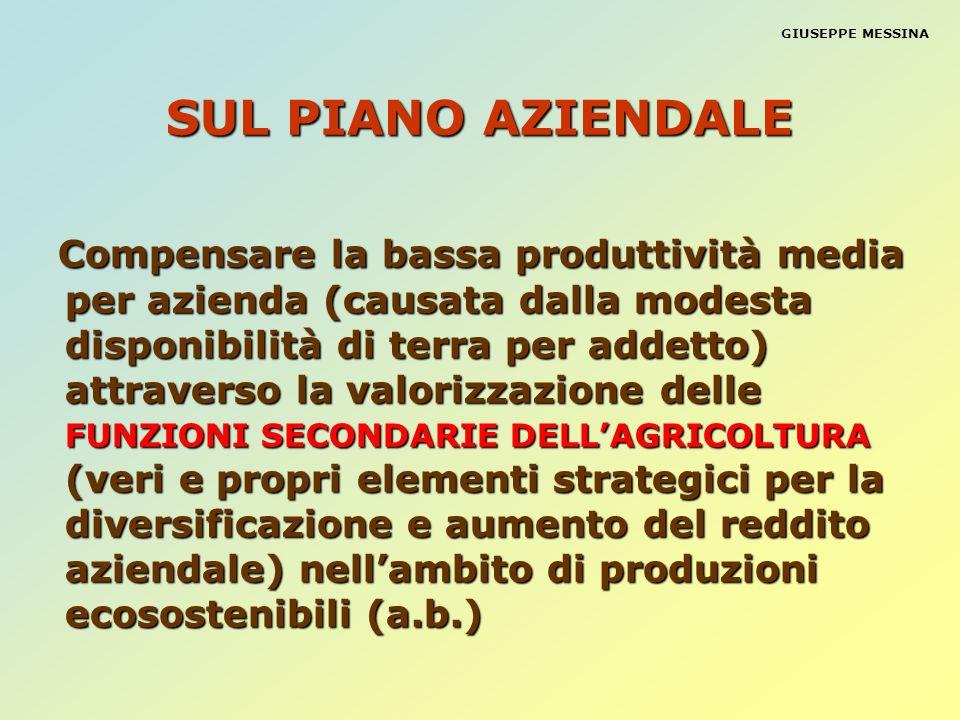 SUL PIANO AZIENDALE