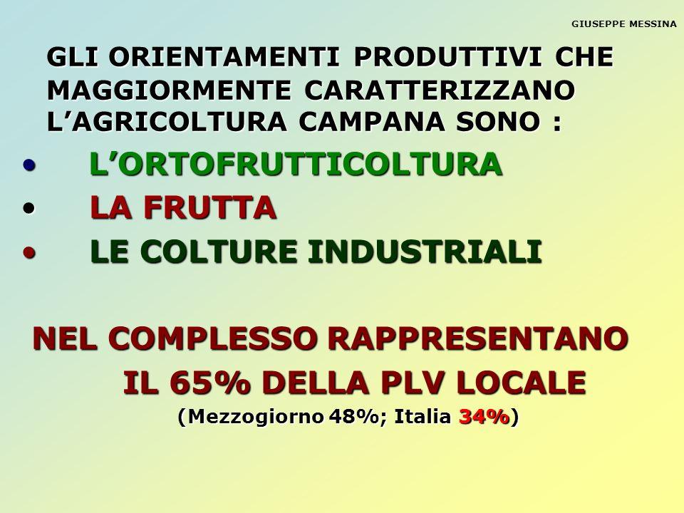 (Mezzogiorno 48%; Italia 34%)