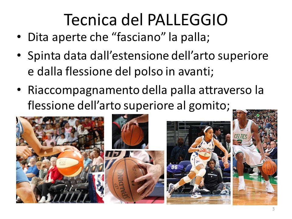 Tecnica del PALLEGGIO Dita aperte che fasciano la palla;
