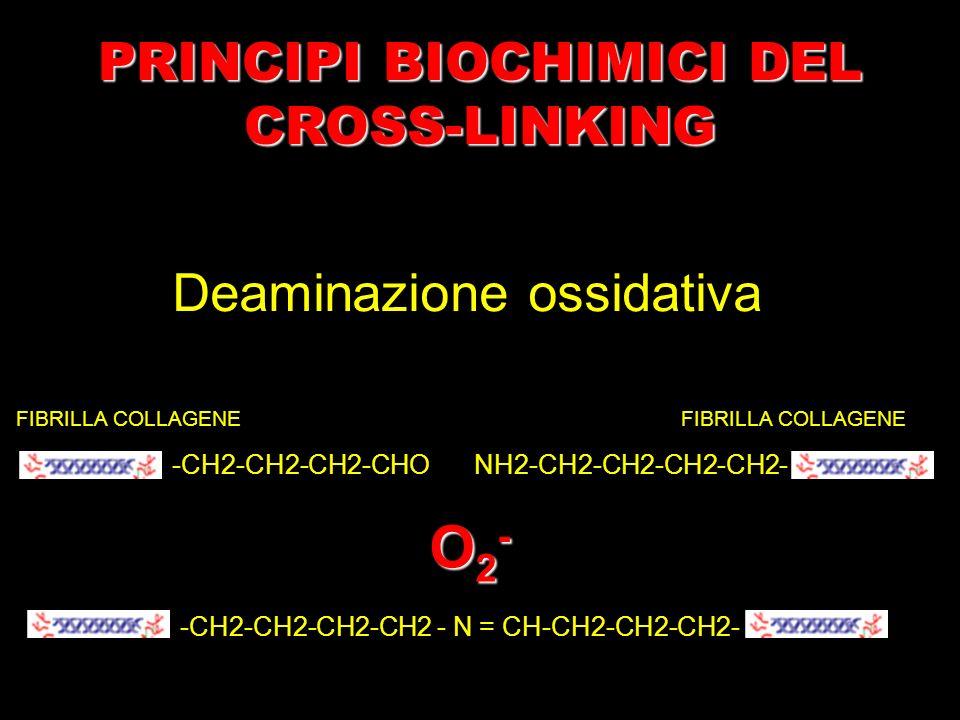 PRINCIPI BIOCHIMICI DEL CROSS-LINKING