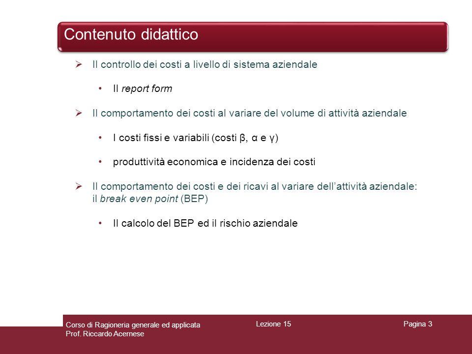 Contenuto didattico Il controllo dei costi a livello di sistema aziendale. Il report form.