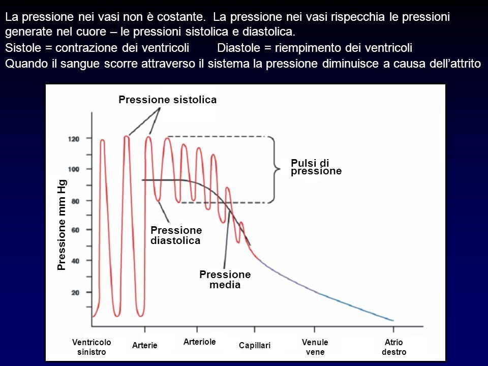 La pressione nei vasi non è costante