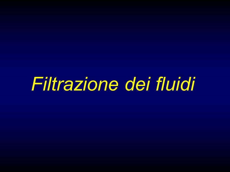Filtrazione dei fluidi