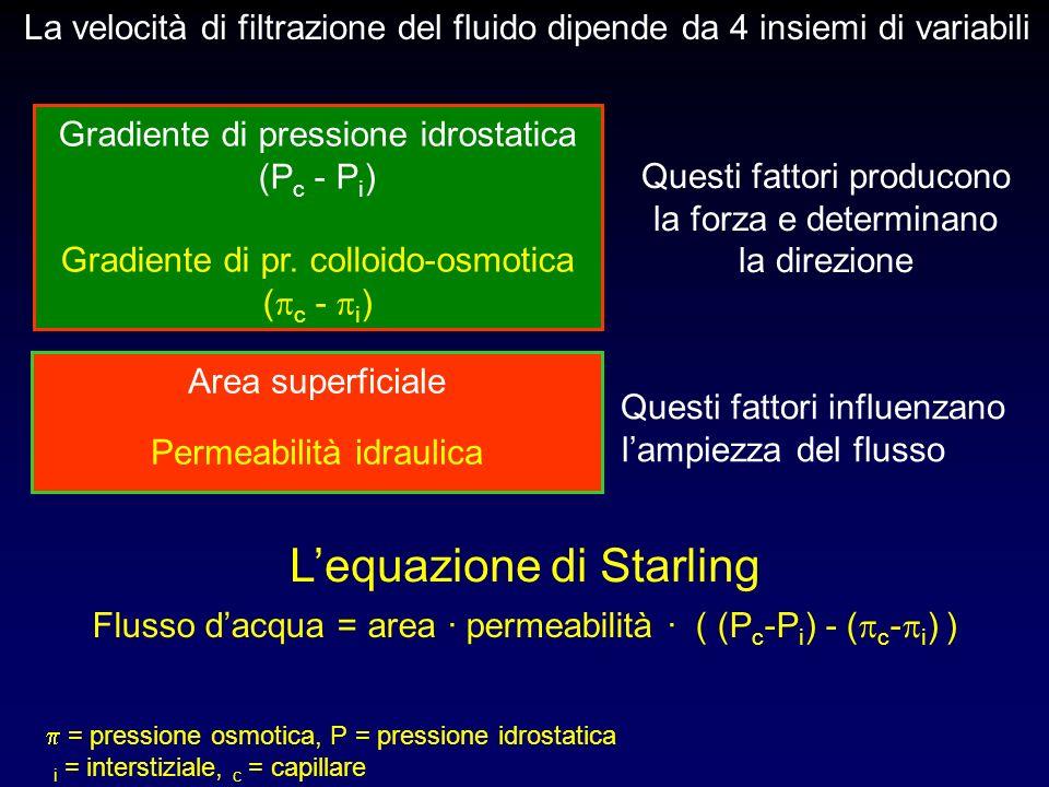 L'equazione di Starling