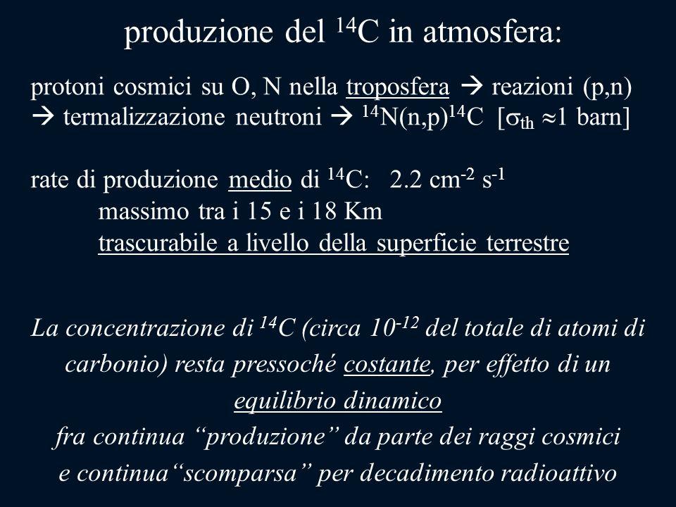 produzione del 14C in atmosfera: