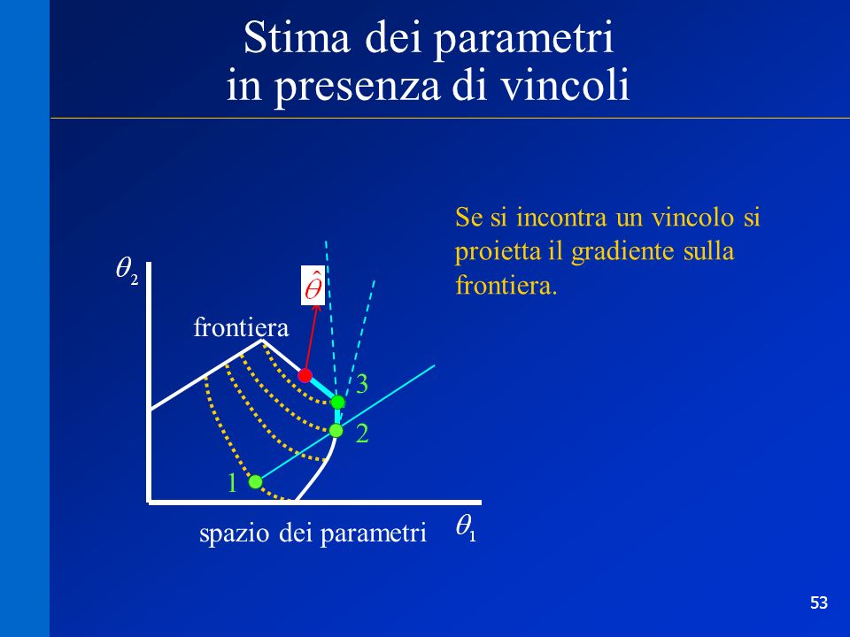 Stima dei parametri in presenza di vincoli