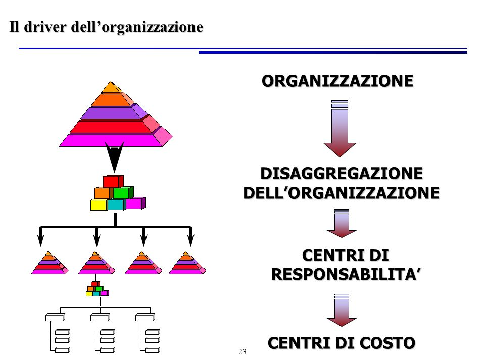 DISAGGREGAZIONE DELL'ORGANIZZAZIONE CENTRI DI RESPONSABILITA'