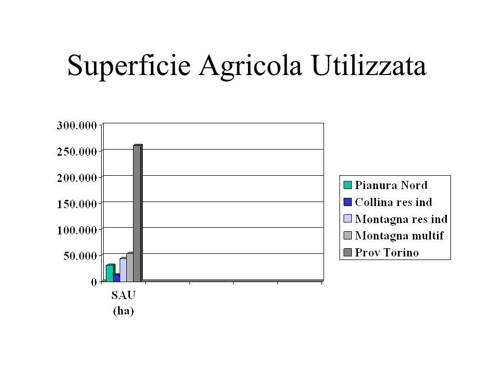 Superficie Agricola Utilizzata