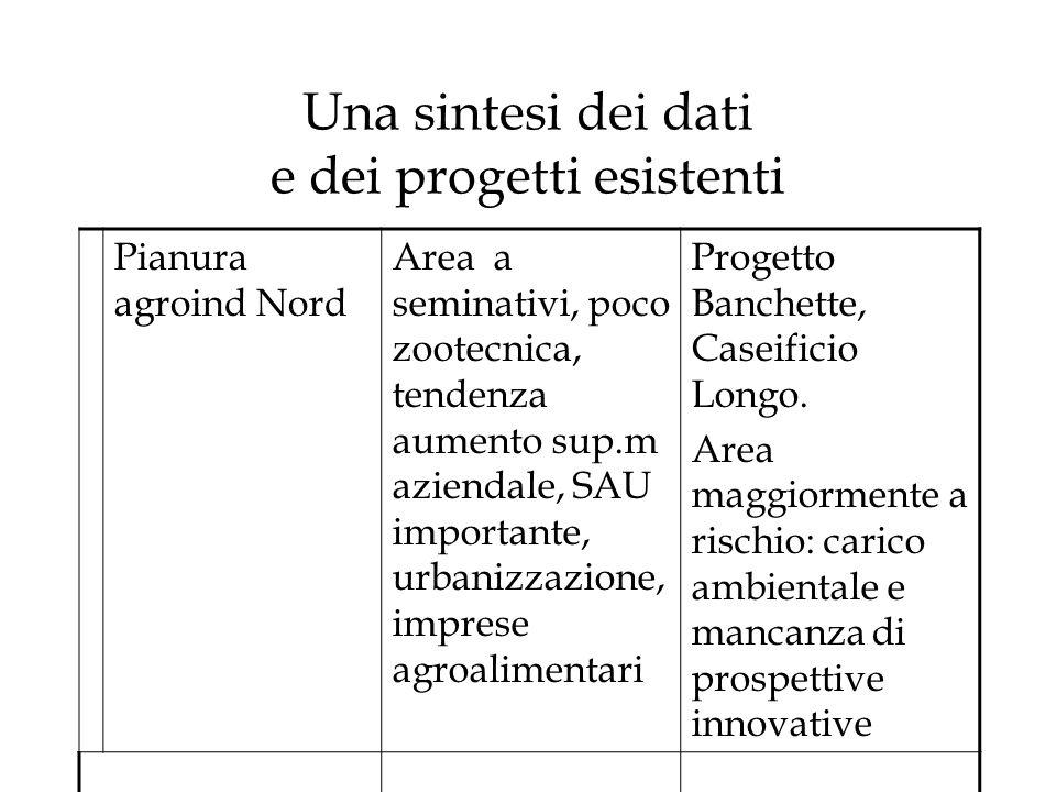 Una sintesi dei dati e dei progetti esistenti