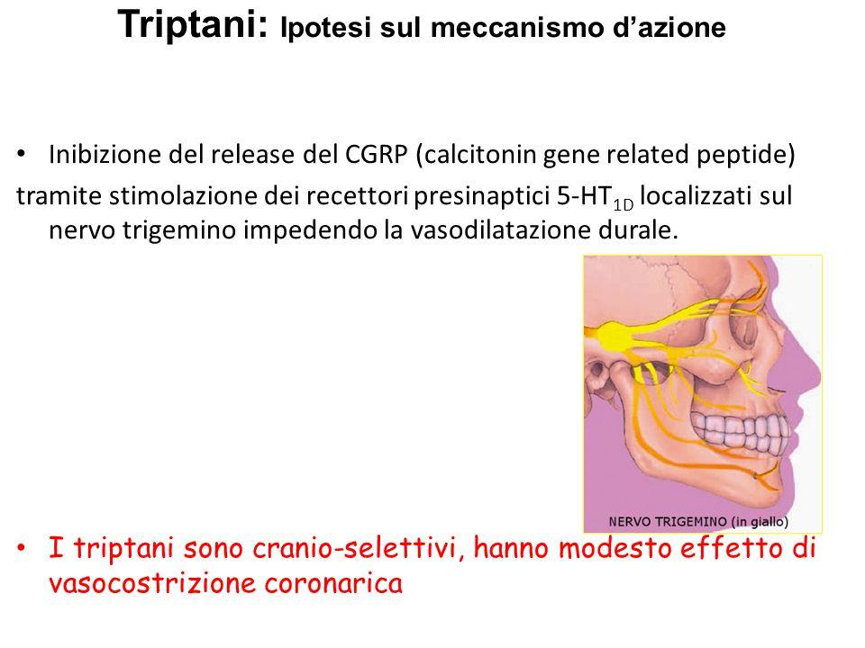 Triptani: Ipotesi sul meccanismo d'azione