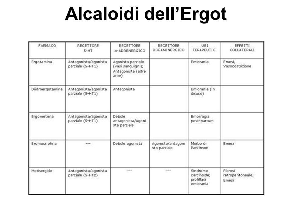 Alcaloidi dell'Ergot
