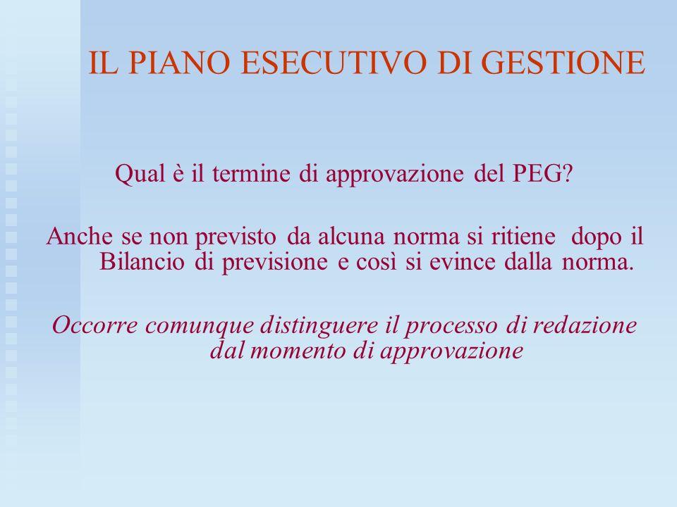 IL PIANO ESECUTIVO DI GESTIONE