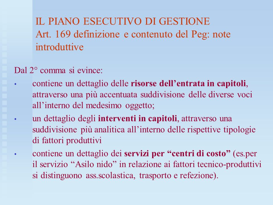 IL PIANO ESECUTIVO DI GESTIONE Art