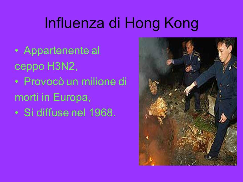 Influenza di Hong Kong Appartenente al ceppo H3N2,