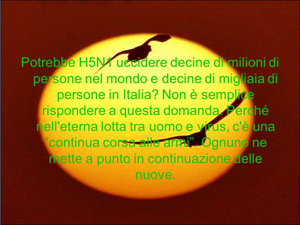 Potrebbe H5N1 uccidere decine di milioni di persone nel mondo e decine di migliaia di persone in Italia.
