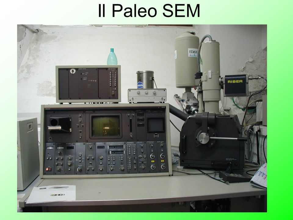 Il Paleo SEM