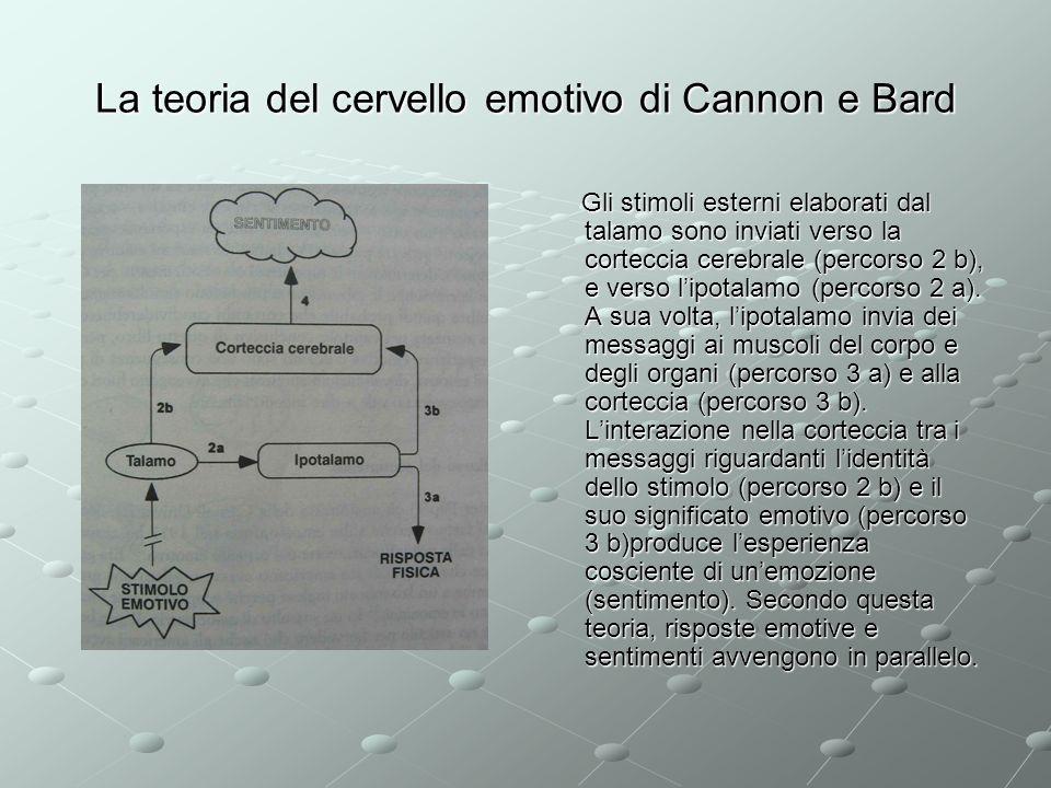 La teoria del cervello emotivo di Cannon e Bard