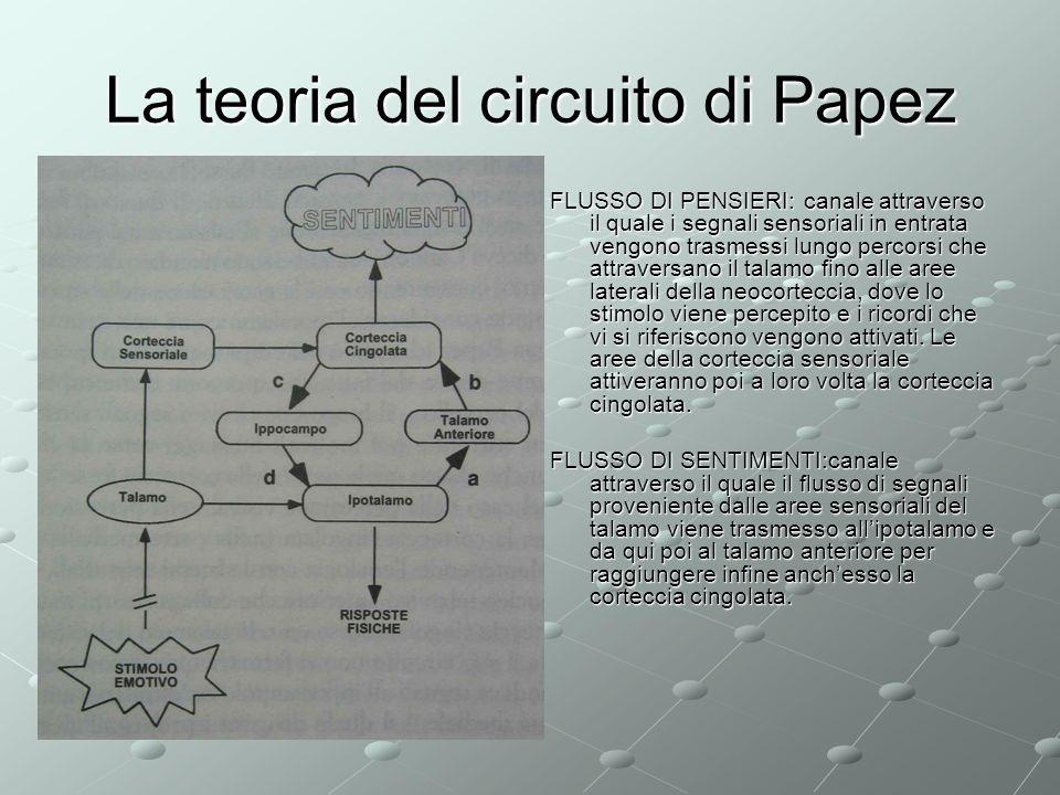 La teoria del circuito di Papez