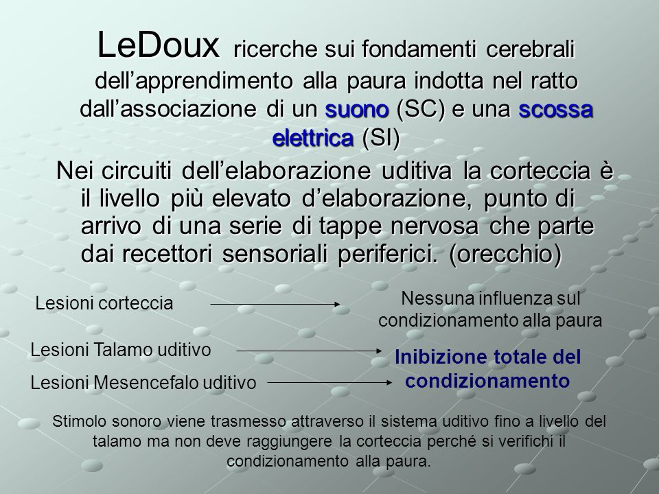 LeDoux ricerche sui fondamenti cerebrali dell'apprendimento alla paura indotta nel ratto dall'associazione di un suono (SC) e una scossa elettrica (SI)