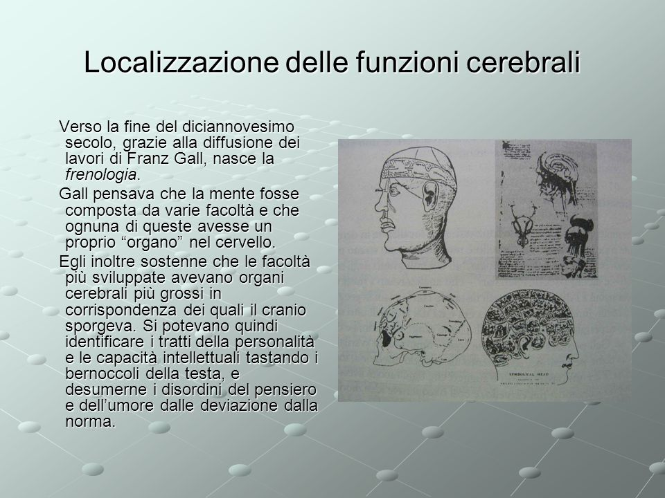 Localizzazione delle funzioni cerebrali