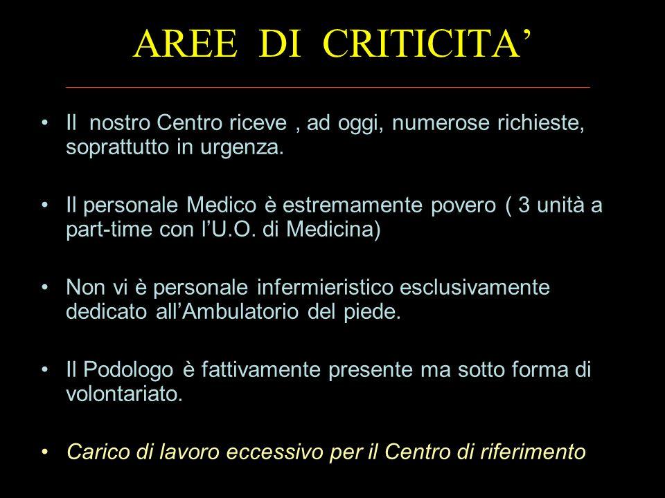 AREE DI CRITICITA' Il nostro Centro riceve , ad oggi, numerose richieste, soprattutto in urgenza.