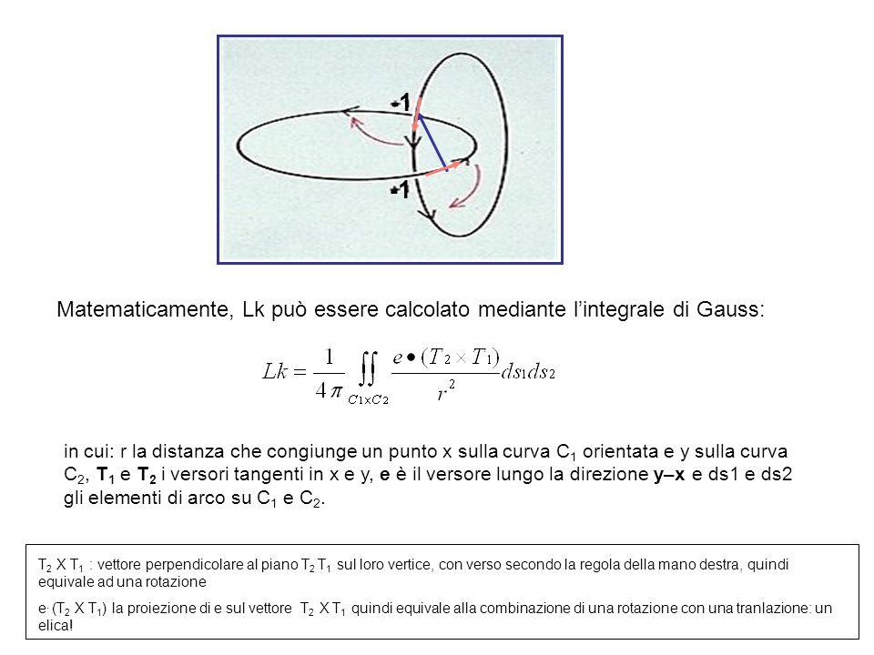 -1 c1. e. -1. c2. Matematicamente, Lk può essere calcolato mediante l'integrale di Gauss: