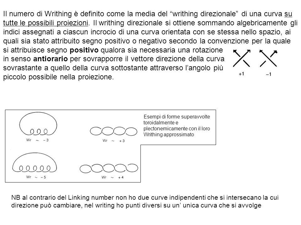 Il numero di Writhing è definito come la media del writhing direzionale di una curva su tutte le possibili proiezioni. Il writhing direzionale si ottiene sommando algebricamente gli indici assegnati a ciascun incrocio di una curva orientata con se stessa nello spazio, ai quali sia stato attribuito segno positivo o negativo secondo la convenzione per la quale si attribuisce segno positivo qualora sia necessaria una rotazione in senso antiorario per sovrapporre il vettore direzione della curva sovrastante a quello della curva sottostante attraverso l'angolo più piccolo possibile nella proiezione.