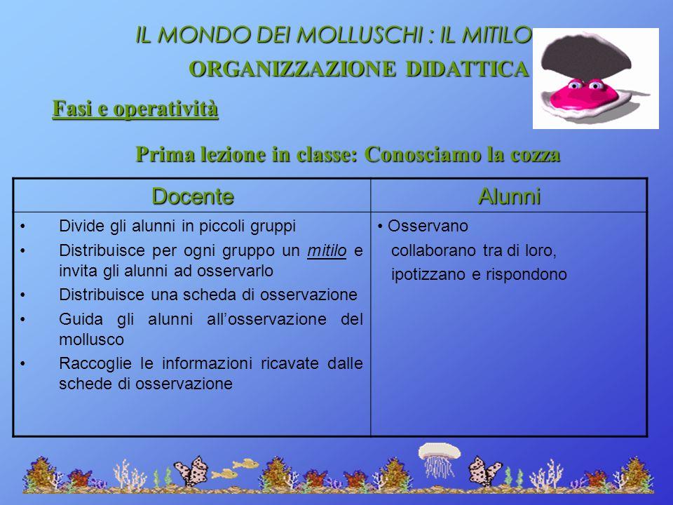 ORGANIZZAZIONE DIDATTICA Prima lezione in classe: Conosciamo la cozza