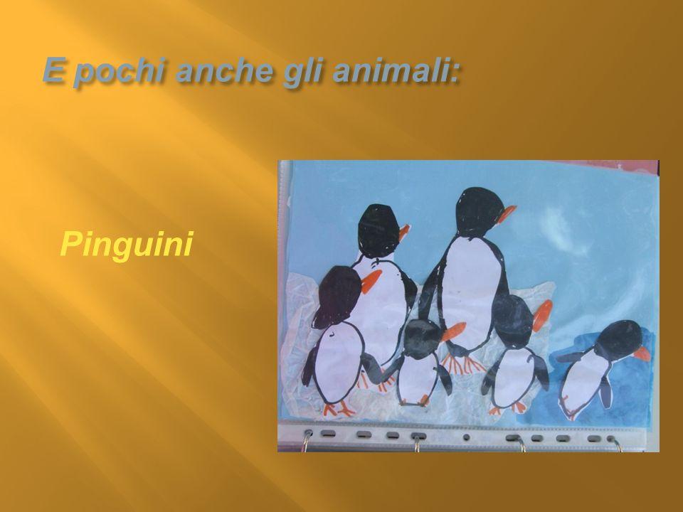 E pochi anche gli animali: