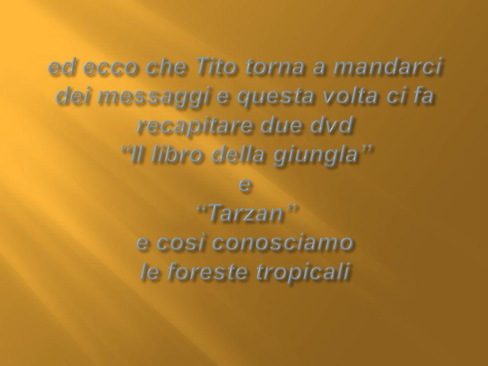 ed ecco che Tito torna a mandarci dei messaggi e questa volta ci fa recapitare due dvd Il libro della giungla e Tarzan e così conosciamo le foreste tropicali