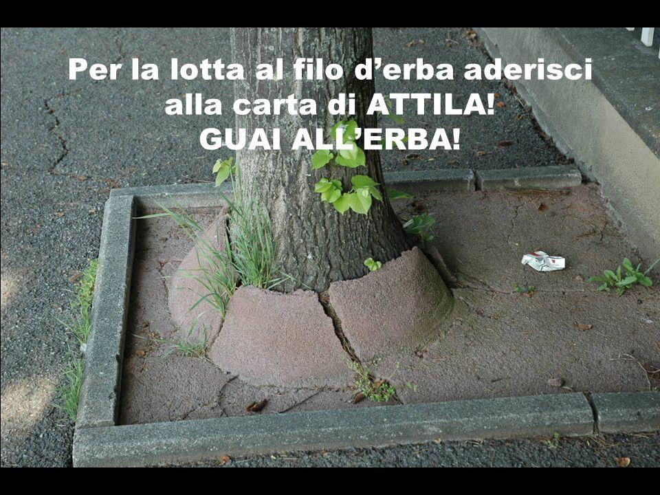 Per la lotta al filo d'erba aderisci alla carta di ATTILA
