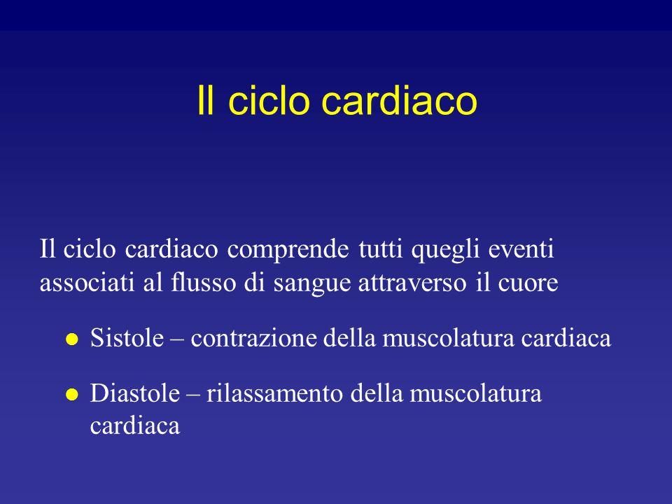 Il ciclo cardiaco Il ciclo cardiaco comprende tutti quegli eventi associati al flusso di sangue attraverso il cuore.