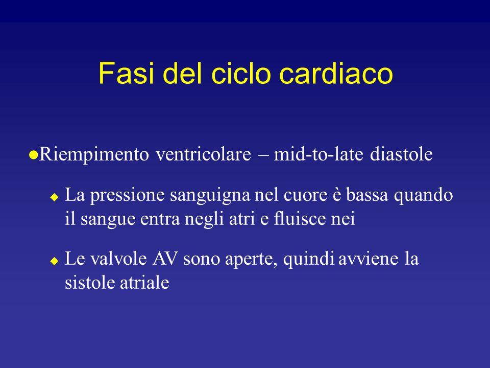Fasi del ciclo cardiaco