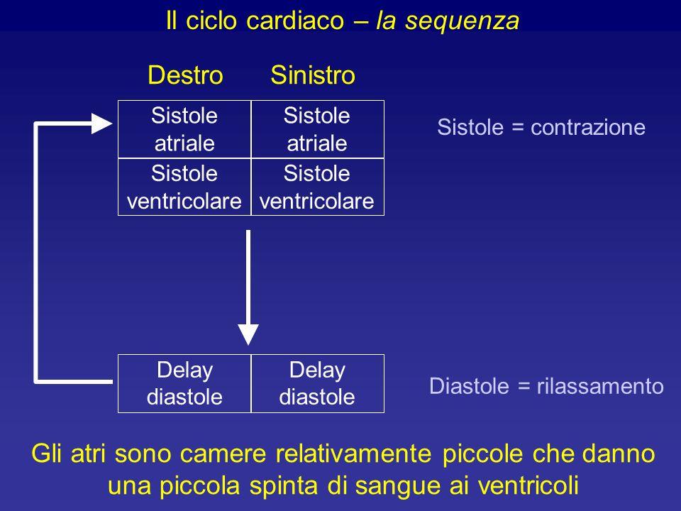 Il ciclo cardiaco – la sequenza