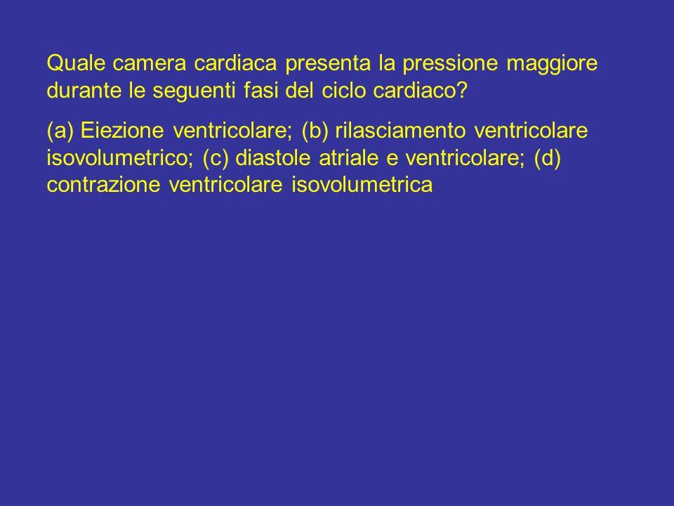 (a) ventricoli; (b) ventricoli; (c) atri; (d) ventricoli