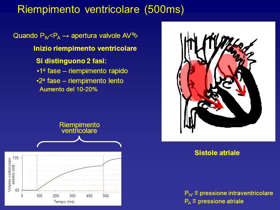 Riempimento ventricolare (500ms)