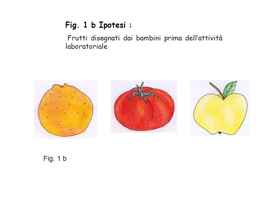 Fig. 1 b Ipotesi : Frutti disegnati dai bambini prima dell'attività laboratoriale Fig. 1 b